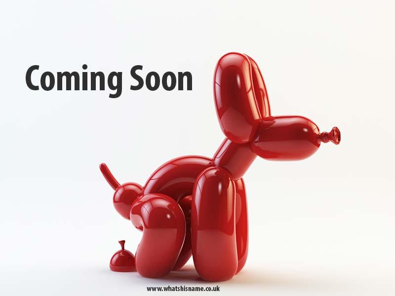Popek-coming-soon